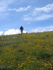 Cruising the hillside